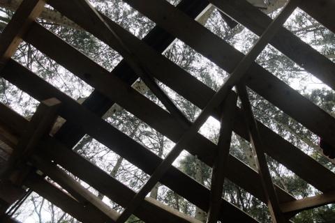 ツリーハウスの床づくり