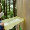ツリーハウスにペンキ塗り